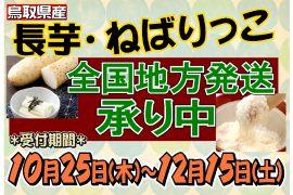 鳥取県産 長芋 ねばりっこ の地方発送承り中